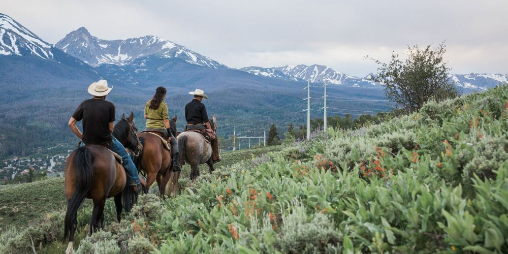 Incredible Trail Rides